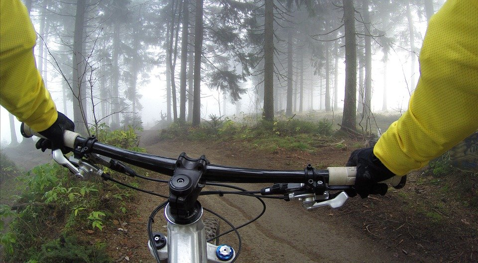 Mountain biking in Casentino